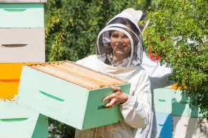 Starting a beehive? We've got the beekeeping supplies to get you started!
