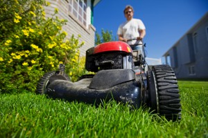 Choosing The Right Lawn Mower For Your Lawn