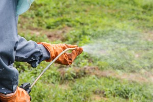 Choosing a Garden Sprayer