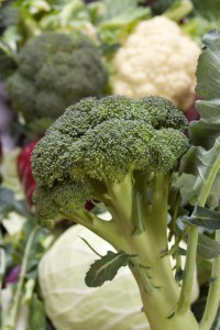 Companion planting broccoli with cauliflower