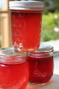 Freezer Canning Recipes
