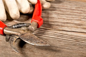 Garden Tools Sharpening Methods