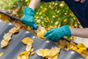 How to Clean Rain Gutters & Downspouts