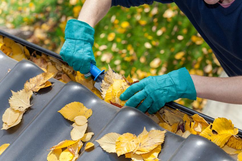How to Clean Rain Gutters & Downspouts | Blain's Farm ...