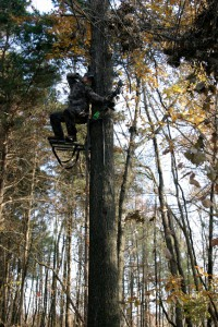 Where to Hang Your Hunting Tree Stand