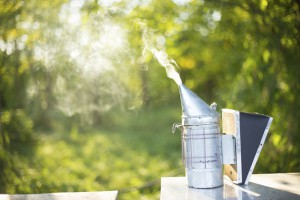 What Does a Bee Smoker Do?