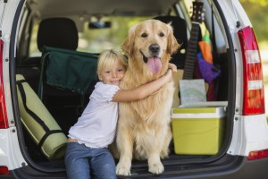 5 Tips for Traveling With Dogs
