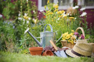 5 Gardening Tips to Get Ready for Spring
