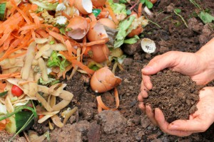 The do's and don't of composting