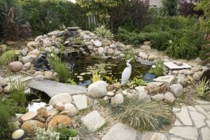 5 Simple Backyard Pond Ideas