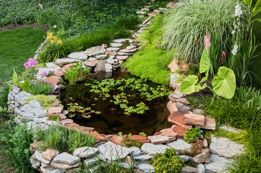 How to build a backyard pond blain 39 s farm fleet blog for Making a pond in your backyard