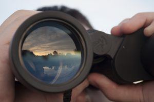 Deer Hunters – Use Your Optics Now