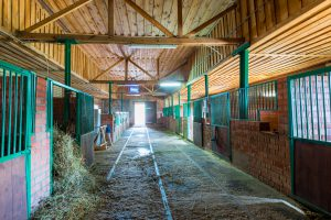 What is Barn Lime & Why Do I Need It?