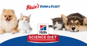 Hill's Science Diet In-Store Demo Events